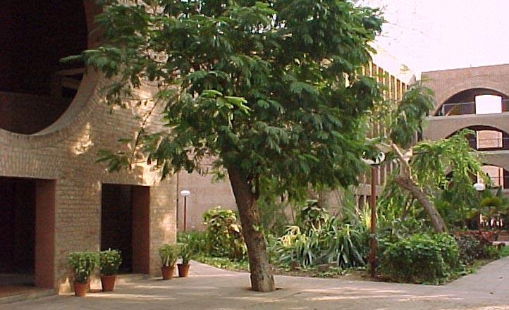 IIMA Campus 12